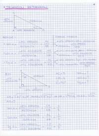 Trigonometria (regola del seno e del coseno, triangoli rettangoli, area del triangolo)
