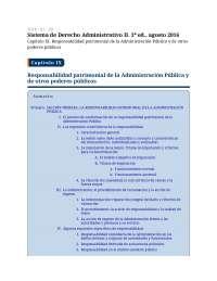 Responsabilidad patrimonial de la Administración Pública y otros poderes públicos