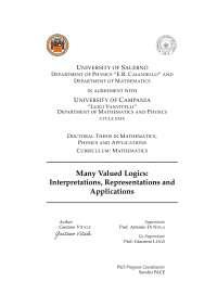 Many Valued Logics: Interpretations, Representations and Applications