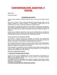 Contaminación Auditiva Yvisual