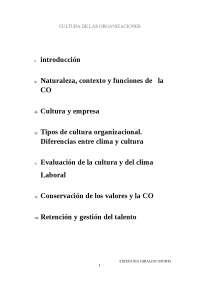 Cultura organizacional Paloma Diaz Soloaga