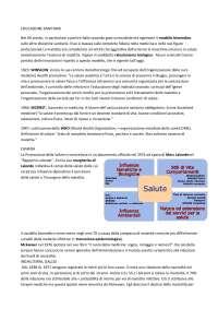 promuovere salute nell'era della globalizzazione