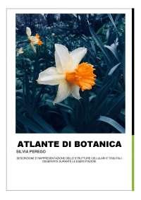 Atlante di Botanica Completo di disegni