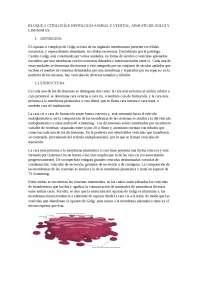 APARATO DE GOLGI Y LISOSOMAS. COMPOSICIÓN, FUNCIÓN Y BIOGÉNESIS.