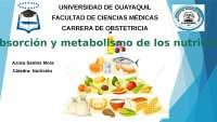 ABSORCIÓN Y METABOLISMO DE LOS NUTRIENTES - diapositivas