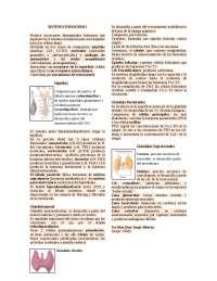 Sistema Endocrino (resumen)