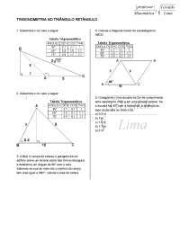 Relatório Triângulos - Triângulos - Geometria Plana