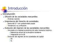 tema 1 teoria general de sociedades I