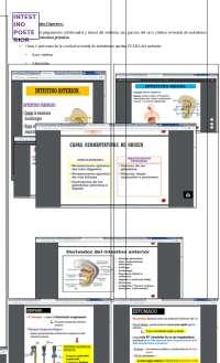 Embriología - Aparato Digestivo