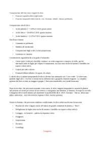 Composizione e produzione Olio extravergine di Oliva