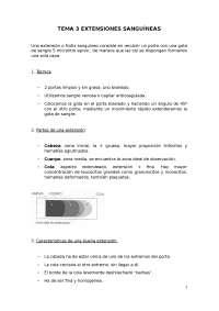 EXTENSIONES SANGUÍNEAS