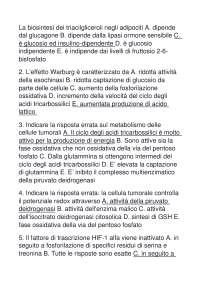 BIOINFORMATICA ESAME BIOTECNOLOGIE MEDICHE