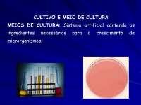Aula sobre Meios de Cultura