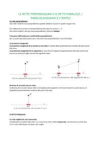 Teoria sulle rette parallele perpendicolari, parallelogrammi e trapezi.