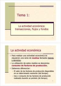 Tema 1. Transacciones flujos fondo