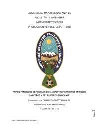 ARBOLES DE NAVIDAD Y SEPARADORES EN BOLIVIA