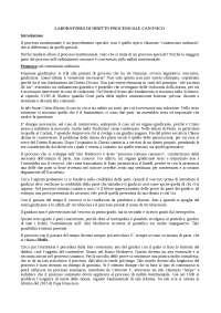 Teoria e prassi del processo matrimoniale canonico/ LABORATORIO Diritto Processuale Canonico