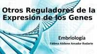 Otros reguladores de la expresión de los genes