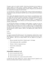 Informe de ulceras peptidas