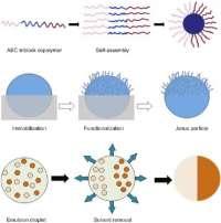 JANUS: a nanoparticle