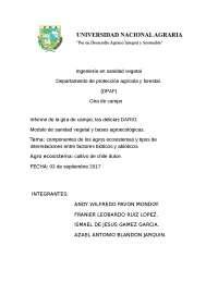 informe de gira de campo Las delicias Dario