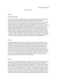practica derecho penal 1