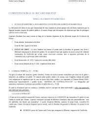 Apuntes Constitucional II completos