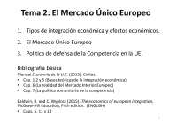 tema 2 ue mercado unico