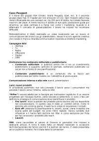 Appunti caso Peugeot