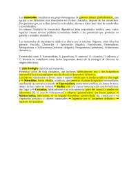 Parásitos intracelulares