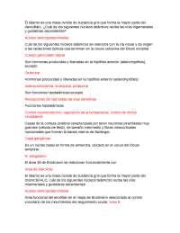 Guía de estudio neuroanatomía