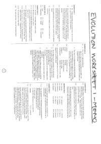 The answer series worksheet on evolution memo