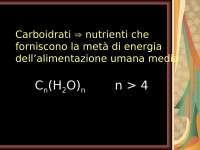 Appunti dettagliati sui carboidrati