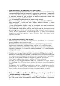 DOMANDE APERTE DI DIRITTO DELL'UNIONE EUROPEA