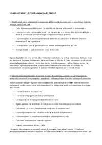 esercitazione di epistemologia pedagogica
