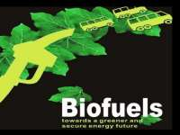 Something 'bout Biofuel