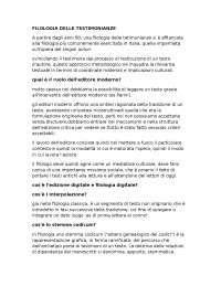 domande filologia italiana Zaccarello