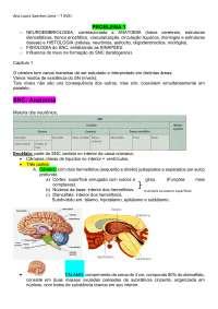 Resumo Neurologia - sentidos