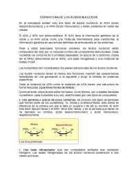 ESTRUCTURA ÁCIDOS NUCLEICOS (COMPONENTES)