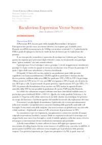 relazione baculovirus, per gallinella, biotecnologie farmaceutiche