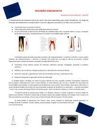 Resumo Endodontia bem sucinto e fácil de entender