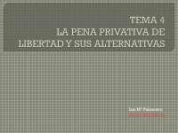 derecho penal temas 2,3,4
