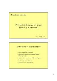 Reacciones de los ácidos biliares