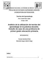 Análisis de la utilización de teorías del aprendizaje en la práctica docente. Estudio de caso de una profesora de primer grado educación primaria.