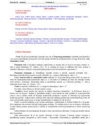 Mehanika 2 - programa  rada i skripta