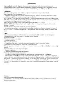 appunti sulle macromolecole, carboidrati, lipidi, proteine, glucidi