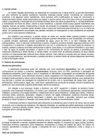 CÉLULA VEGETAL - REVISÃO