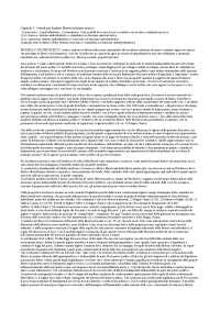 Storia delle costituzioni e delle codificazioni moderne Maurizio Fioravanti