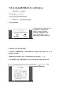 TEMA 1 AME - Apuntes 1