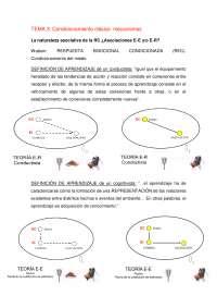 TEMA 3 AME - Apuntes 3